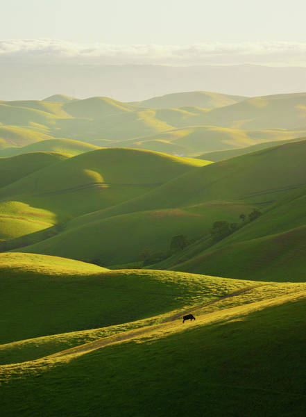 Livermore Wall Art - Photograph - Hills Of East Bay by By Sathish Jothikumar
