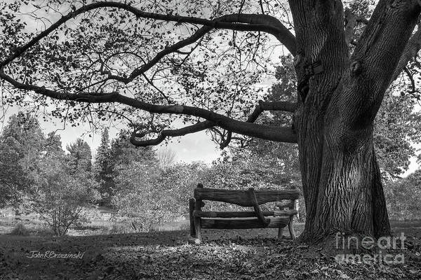 Photograph - Hillsdale College Slayton Arboretum by University Icons