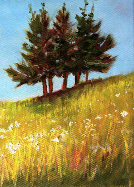 Wall Art - Painting - Hillside Evergreens by Nancy Merkle