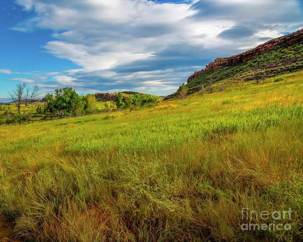 Photograph - Hillside by Jon Burch Photography