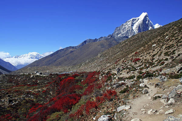 Khumbu Wall Art - Photograph - Himalayan Landscape by Pal Teravagimov Photography