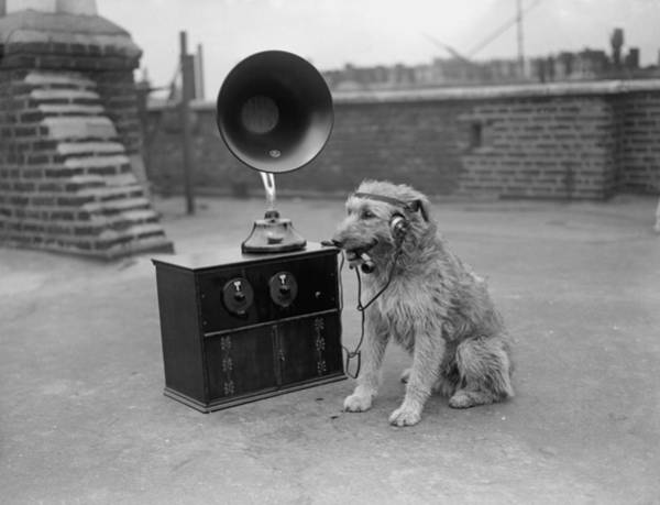 No Smoking Wall Art - Photograph - His Masters Voice by Fox Photos