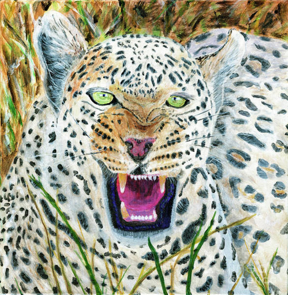 Wall Art - Painting - Hissing Leopard Painting by Timothy Hacker