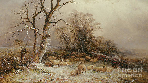 Wall Art - Painting - Hoar Frost by George Augustus Williams