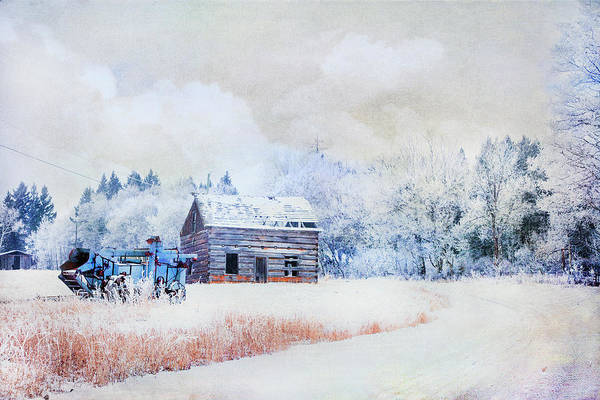 Photograph - Hoar Frost On Long Lake Road by Theresa Tahara
