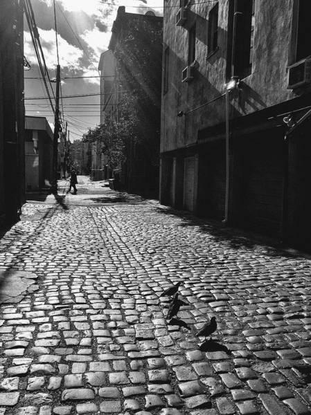Photograph - Hoboken Cobblestones by Frank Winters