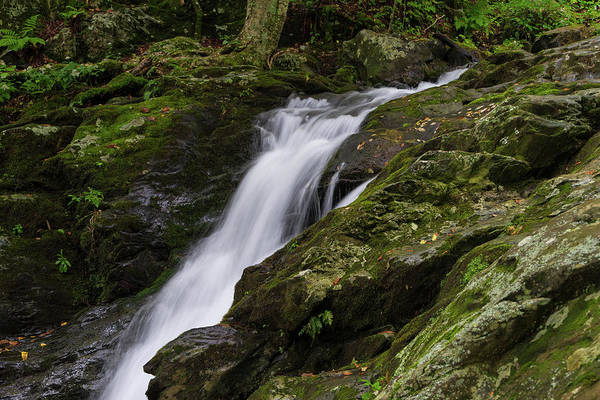 Photograph - Hogcamp Branch Falls IIi by William Dickman