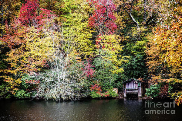 Wall Art - Photograph - Holding It Together by Anita Faye