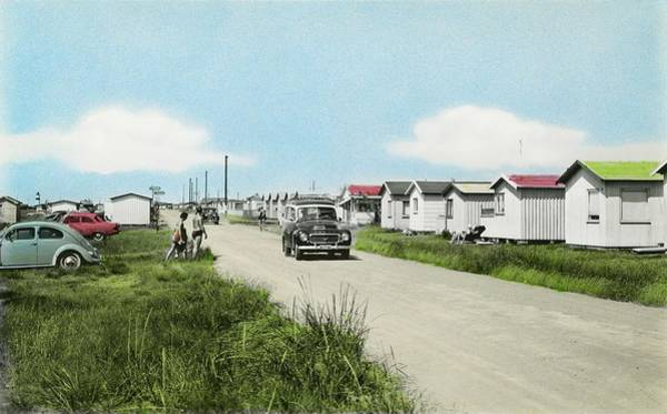 Painting - Holiday Cabins At Olofsbo Beach, Falkenberg Halland  Sweden 1960 by Ahmet Asar