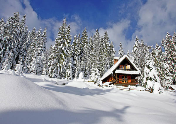 Chalet Photograph - Holiday Home by Mistikas