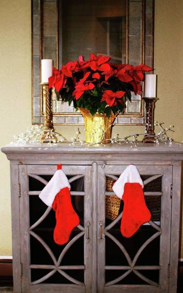 Photograph - Holiday Indoor Display by Cynthia Guinn