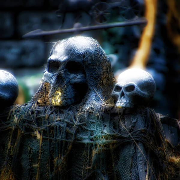 Wall Art - Photograph - Holiday Time Halloween Skulls Sq Format by Thomas Woolworth
