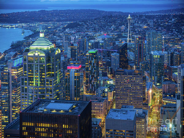 Wall Art - Photograph - Holidays Seattle At Night by Mike Reid