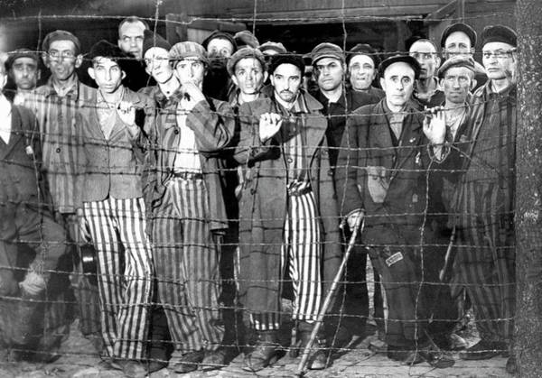 Concentration Camp Photograph - Hollow-eyed, Emaciated Male Prisoners, V by Margaret Bourke-white