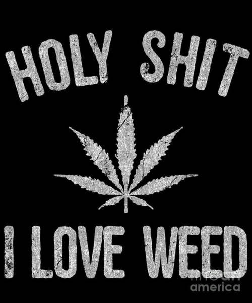 Sarcastic Wall Art - Digital Art - Holy Shit I Love Weed by Flippin Sweet Gear