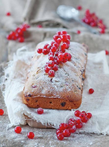 Currants Photograph - Homemade Cake With Redcurrant by Oxana Denezhkina