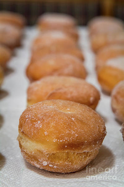 Krapfen Wall Art - Photograph - Paczki Doughnuts  by Deborah Klubertanz