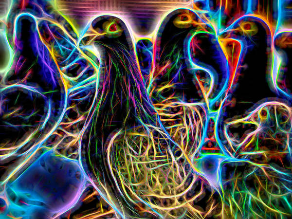 Photograph - Homing Pigeon Group Neon by Don Northup
