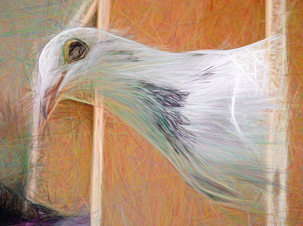 Digital Art - Homing Pigeon Smeared by Don Northup