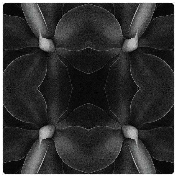 Fleur Digital Art - Hommage To Georgia by Sylver Bernat