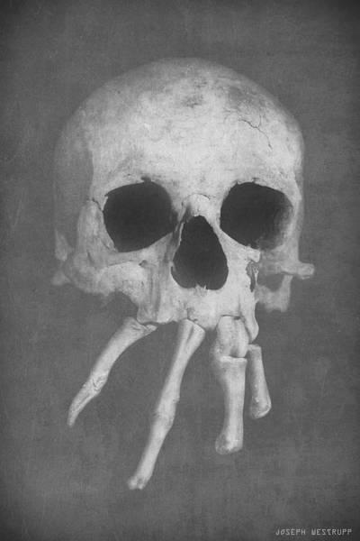 Joseph Photograph - Homo Spidercus by Joseph Westrupp