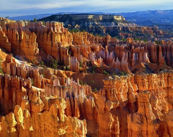 Wall Art - Photograph - Hoodoo Rock Formations, Bryce Canyon by Design Pics/david L. Brown