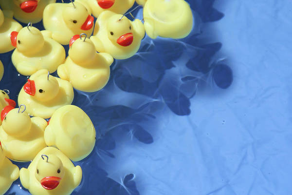 Rubber Duck Wall Art - Photograph - Hook A Rubber Duck In Paddling Pool by Lily Currie