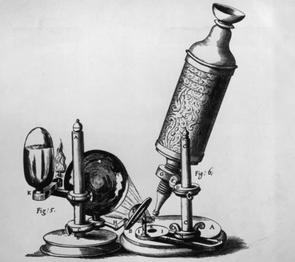 Wall Art - Photograph - Hookes Microscope by Hulton Archive