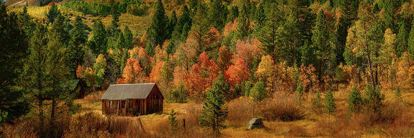 Photograph - Hope Valley Cabin by John Hight