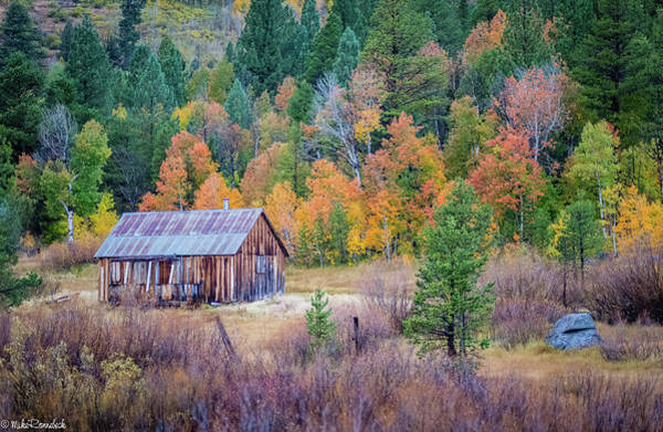 Photograph - Hope Valley Cabin by Mike Ronnebeck