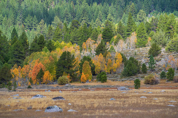 Photograph - Hope Valley In Fall - 3 by Jonathan Hansen