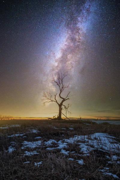 Photograph - Hopeless He Stays  by Aaron J Groen