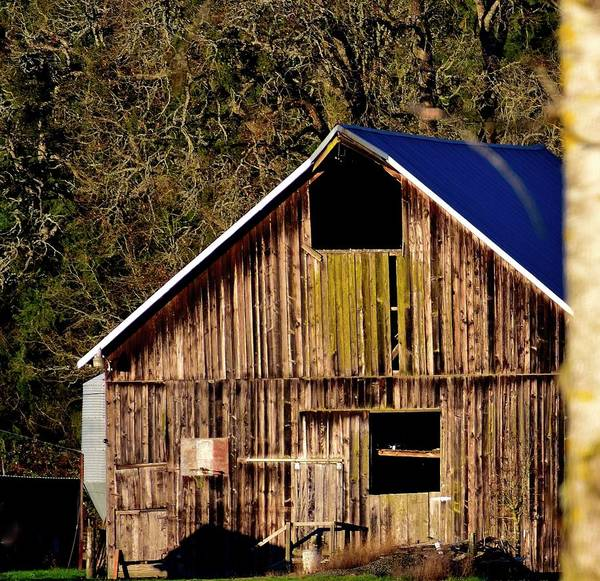 Photograph - Hopewell Barn by Jerry Sodorff
