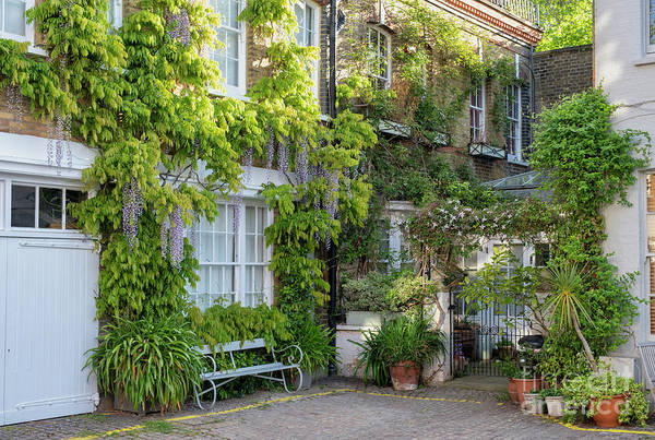 Photograph - Horbury Mews Notting Hill by Tim Gainey
