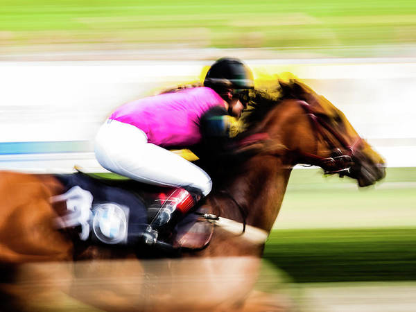 Photograph - Horce Racing 02 by Jorg Becker
