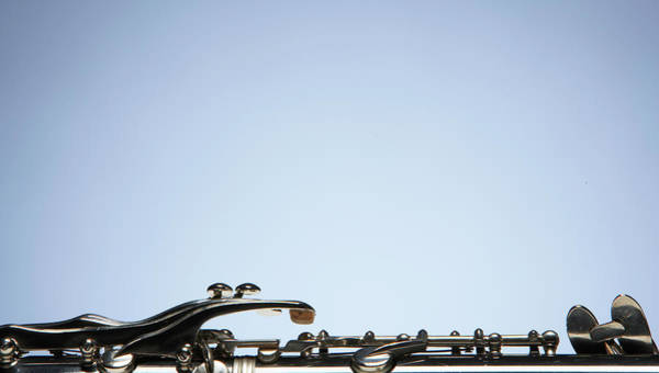 Wall Art - Photograph - Horn, Close-up Of Keys by Thomas Northcut