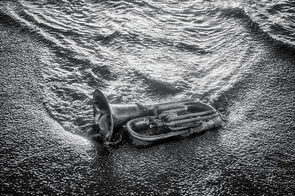Wall Art - Photograph - Horn In The Surf In Black And White by Garry Gay