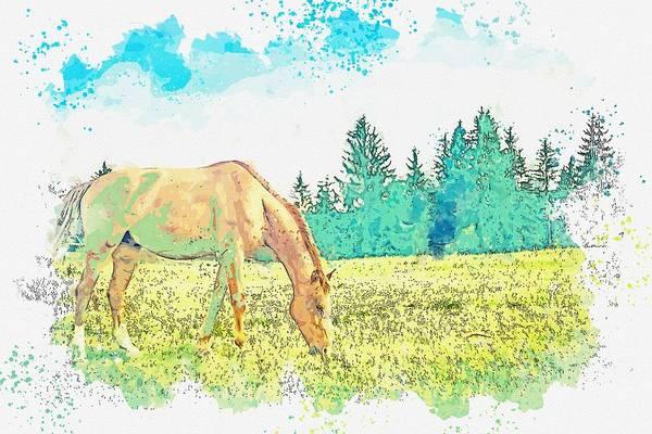 Wall Art - Painting - Horse , Tara, Rastiste, Serbia    Watercolor By Ahmet Asar by Celestial Images