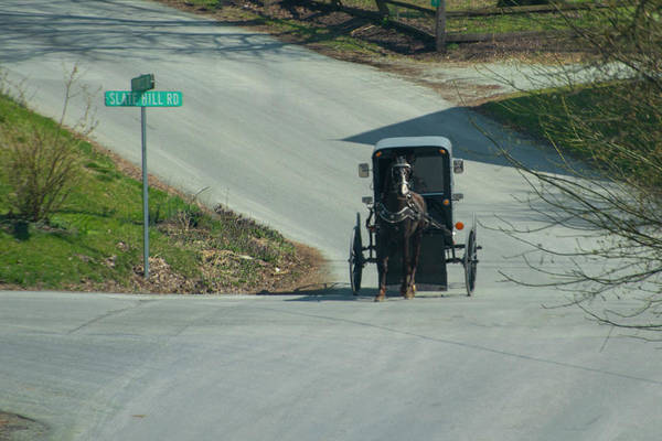 Wall Art - Photograph - Horse And Buggy - Amish Country - Lancaster County by Bill Cannon