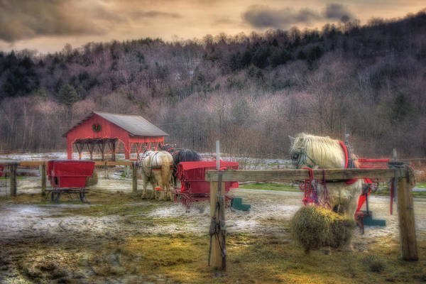 Photograph - Horse And Carriage Ride - Stowe Vermont by Joann Vitali