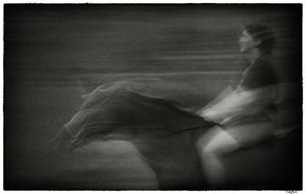 Photograph - Horse And Rider by Rudy Umans