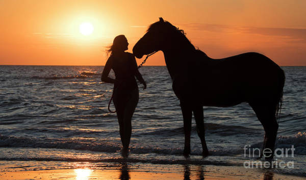 Photograph - Horse And Woman At Sunset by Arterra Picture Library