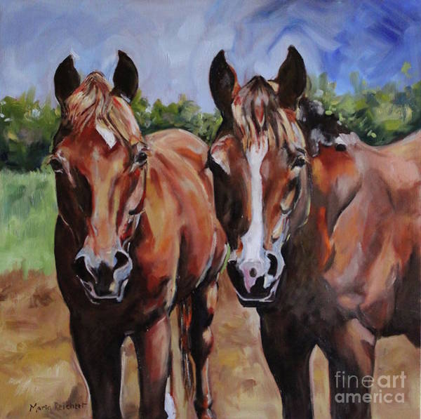 Aqha Painting - Horse Art  by Maria's Watercolor