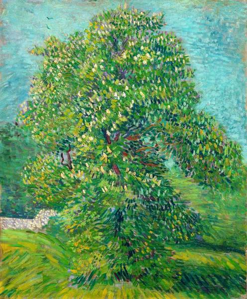 Chestnut Horse Painting - Horse Chestnut Tree In Blossom - Digital Remastered Edition by Vincent van Gogh