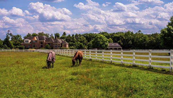 Photograph - Horse Farm by Louis Dallara