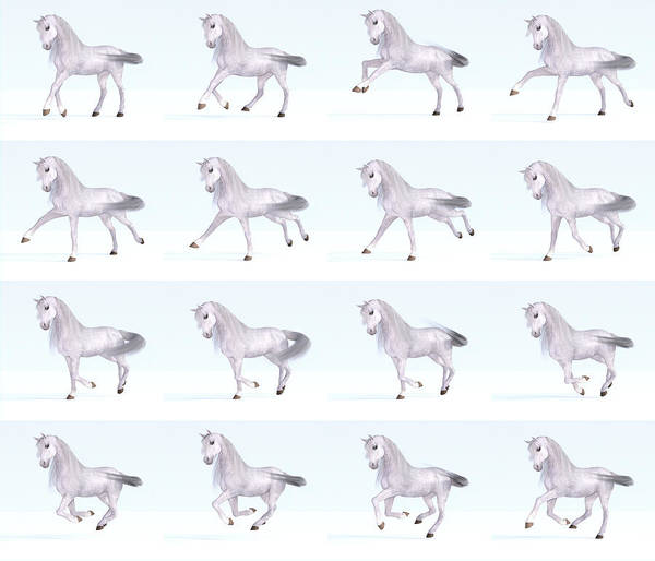 Dapple Digital Art - Horse Gallop Sequence by Betsy Knapp
