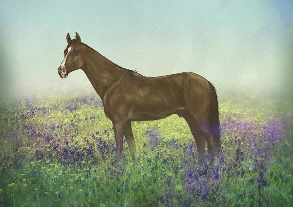 Wall Art - Mixed Media - Horse In Bluebell Field by Amanda Lakey