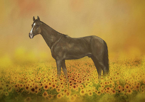 Wall Art - Mixed Media - Horse In Sunflower Field by Amanda Lakey