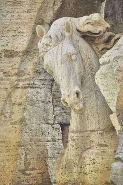Photograph - Horse In The Fountain  by JAMART Photography