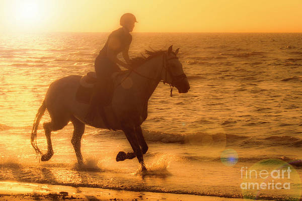 Photograph - Horse Riding At Sunset by Arterra Picture Library
